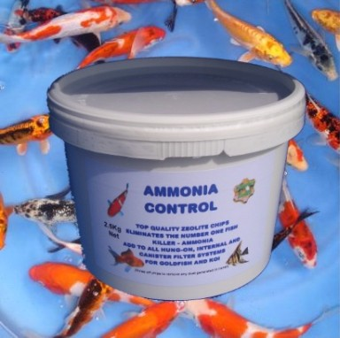 Zeolite is the ideal medium to keep down Ammonia levels from Koi carp